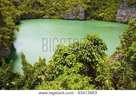 T Of A Green Lagoon And Water