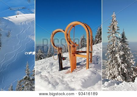 Collage - Long Horn Sleds And Skiing Tracks