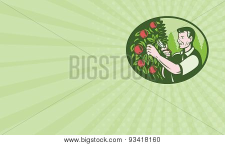 Business Card Horticulturist Farmer Pruning Fruit