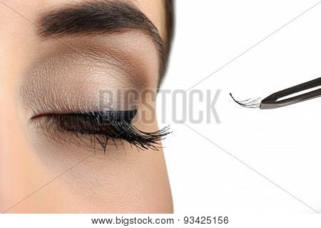 Makeup Close-up. Eyebrow Makeup. Eyelash Extension.