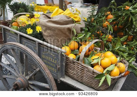 Basket Citrus On An Ancient Chariot