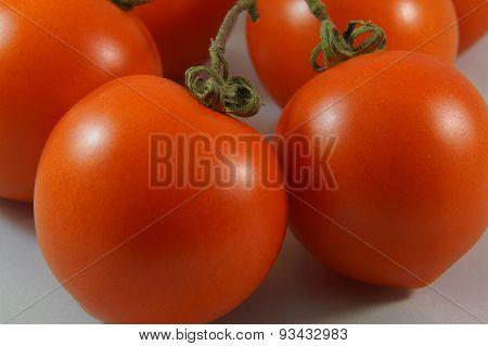 Twig tomatoes