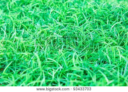 Artificial turf football field with a side view.
