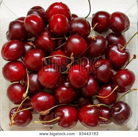 Close up of fresh ripe cherry berries