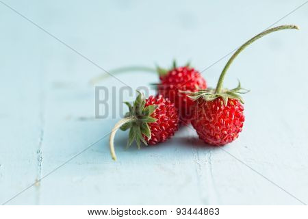Wild strawberry on blue table