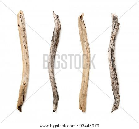 Set of dry tree branch on white background