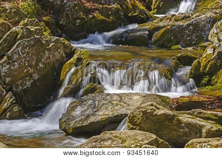 Quiet Water In A Mountain Stream