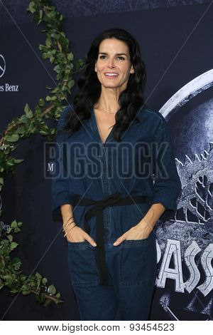 LOS ANGELES - JUN 9:  Angie Harmon at the