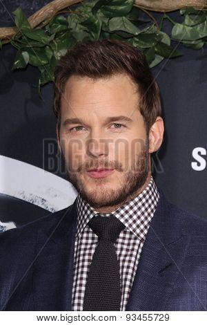 LOS ANGELES - JUN 9:  Chris Pratt at the