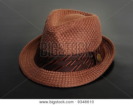 Stylish brown hat