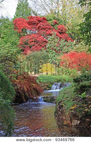 River in a garden