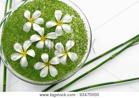 bowl of with white frangipani with green small leaves in water and grove