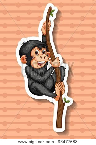 Small monkey hanging on the branch