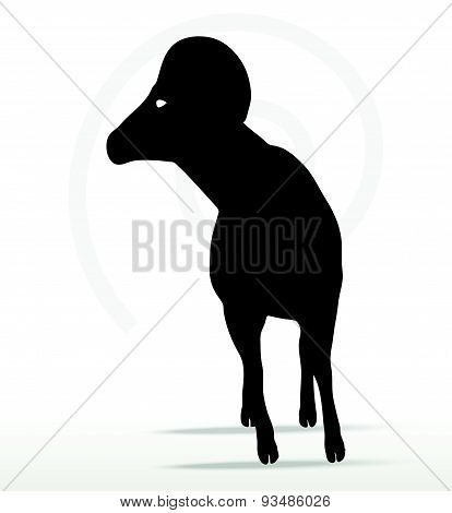 Big Horn Sheep  Silhouette In Twist Head  Pose