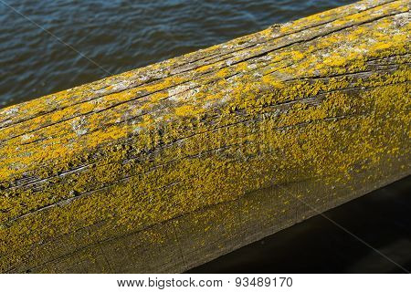 Weathered Oak Beam Of An Old Jetty