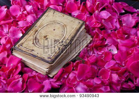 Book Of Roses