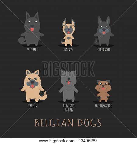 Set Of Belgian Dogs