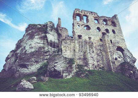Medieval Polish Castle