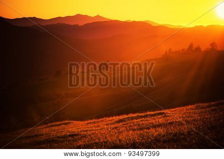 Summer Sunset Landscape