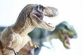 pic of pacific rim  - shooting closeup dinosaur model on white background - JPG