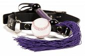 image of sado-masochism  - Baseball ball gag and whip - JPG