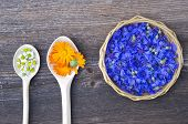 foto of marigold  - chamomile marigold and cornflower medical herbs in wooden spoons and wicker basket - JPG