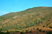 picture of atlas  - morocco outdoor general view and atlas mountains landscape - JPG