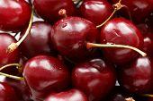 pic of grub  - Close up of fresh ripe cherry berries - JPG