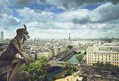 picture of gargoyles  - Gargoyle on Notre Dame Cathedral - JPG