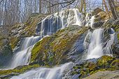 picture of hollow  - Dark Hollow Falls in Shenandoah National Park in Virginia in the Early Spring - JPG