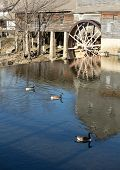 picture of water-mill  - Calm water around a water wheel in pigeon forge tennessee  - JPG