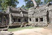 picture of raider  - Roots of a spung running along a stone wall in the temple of Ta Prohm - JPG