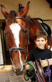 picture of year horse  - Closeup photo of little boy and horse standing - JPG