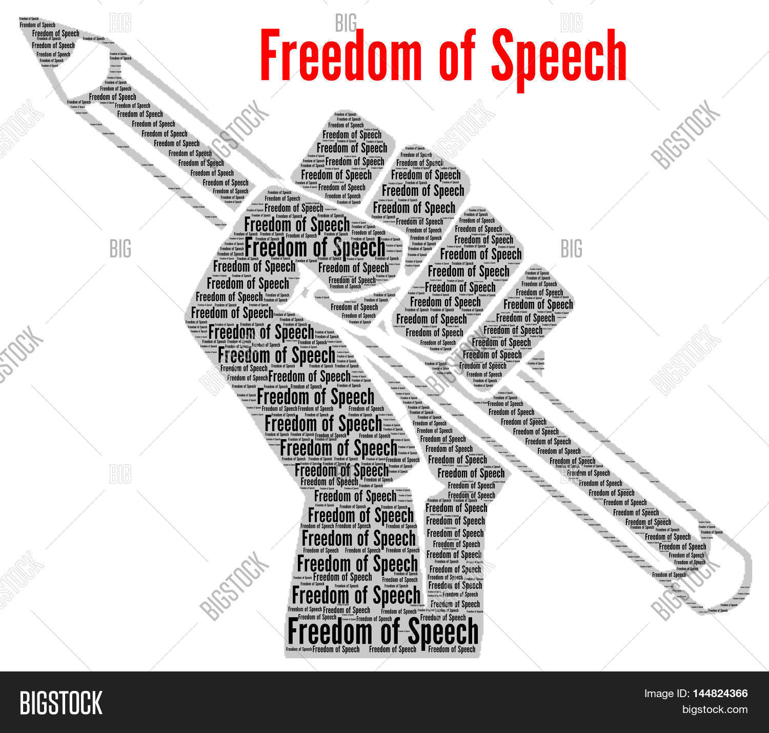 The High Cost of Freedom of Speech