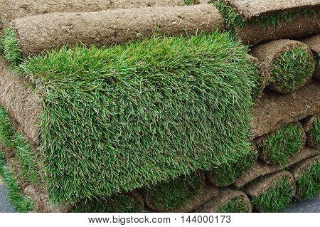 close up on stacking turf sod carpet