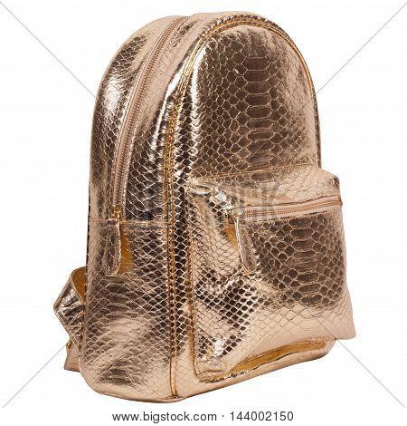 Fashion exotic snakeskin (python) handmade rucksack isolated on a white background
