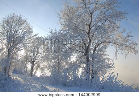 winter winter-tide winter-time hibernate he coldest season of the year in the northern hemisphere from December to February and in the southern hemisphere from June to August.