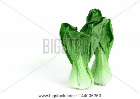 Bok choy green leaf Asia vegetable on white background