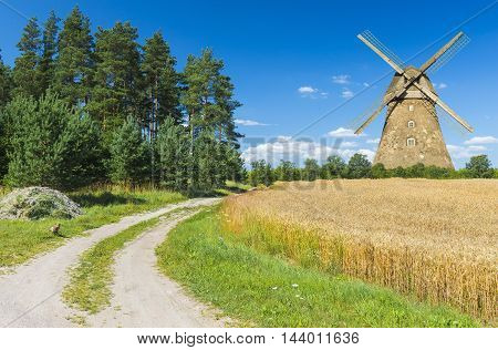 Countryside landscape with field of ripening wheat, forest and windmill. Photo was taken in one of the ecologically cleanest region of Europe