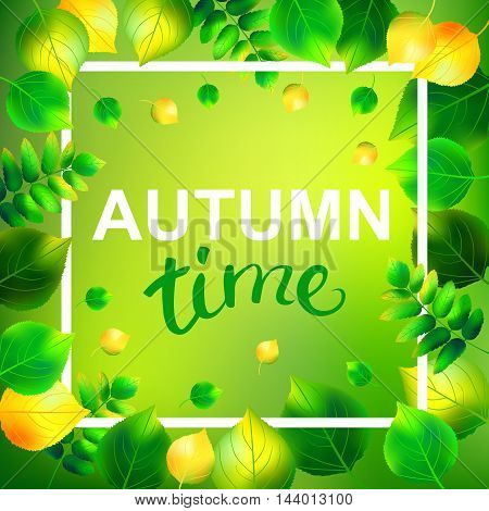 Autumn time template with birch and rowan leaf. Lettering autumn time. Vector illustration.
