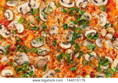 Closeup Of Fresh Baked Pizza