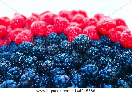 heap of ripe berries of black berry and raspberry