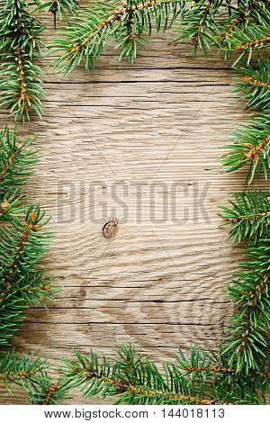 Green spruce branches on old wooden background