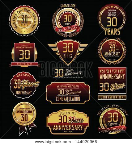 Anniversary 30 years retro vintage badges and labels vector