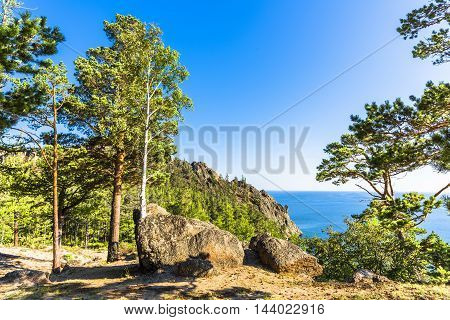 On the shores of lake Baikal, the trees can grow right out of huge stones lying on the coast.