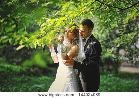 Wedding Couple Under The Tree At Their Lucky Day