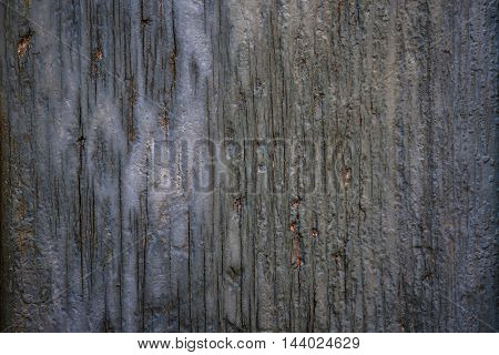 Old cracked wooden background of weathered distressed rustic wood with faded  blue paint