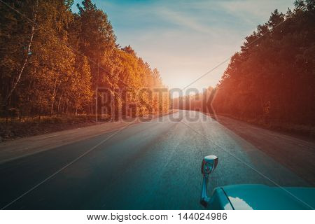 Car driving on an empty road thought wild forest on a sunset
