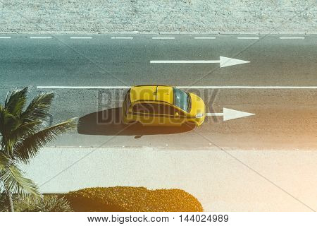 City street with arrow road markings, yellow car taxi, palm tree, top view