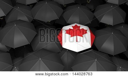Top view of 3d rendered black umbrella background with one Canadian umbrella